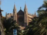 Die Kathedrale in Palma in der Nachmittagssonne