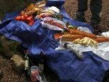 ... und Picknick fest