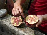 Links im Bild der Granatapfelschlagstein