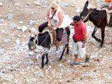 Esel-Touristik