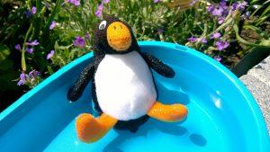 Pingu-Ole badet